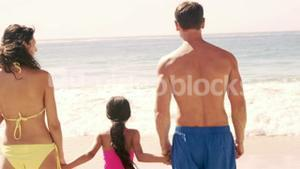 Family holding hands and looking at the beach