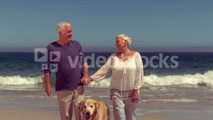Happy old couple with dog smiling