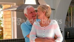 Senior couple embracing in kitchen
