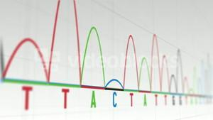 Animation of graphs and statistics