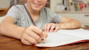 Smiling boy writing on notebook