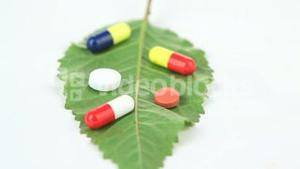 Close up of a leaf with pills turning on itself