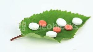 Green leaf with pills turning on itself