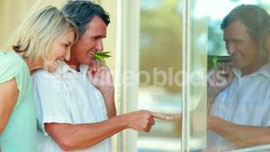 Smiling couple looking at display window