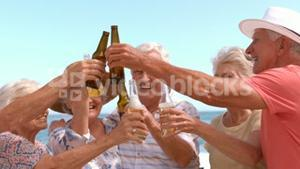 Group of mature people clinking bottles