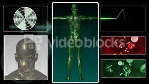 Digital human body in 3D