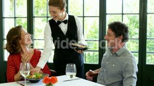 Cute couple is being waited on a glass during lunch meeting