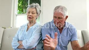 Old couple arguing