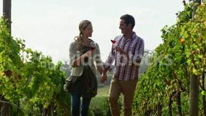 Happy couple toasting a glass of red wine while walking in field