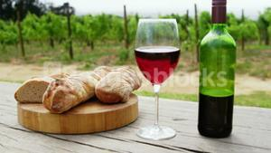 Focus on bread with red wine