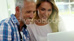 Portrait of mature couple is looking a laptop