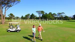 Full length of mature golfer couple by golf buggy