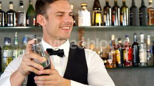 Bartender mixing a cocktail in a shaker