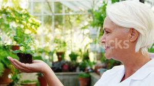 Female scientist holding pot plant