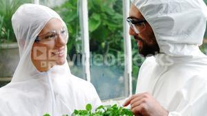 Man and woman interacting while looking at potted plant