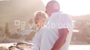 Elderly couple walking and discussing on the beach