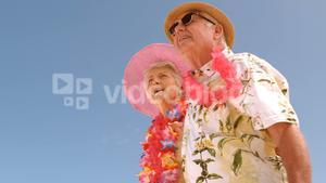 Smiling senior couple on the beach