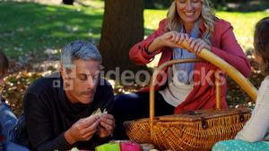 Woman slicing bread during a picnic