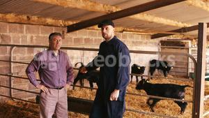 Cattle farmer interacting with a man