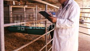 Veterinary physician noting on a clipboard