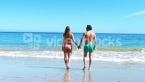 Rear view of couple walking on beach
