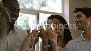 Friends toasting a wine glasses
