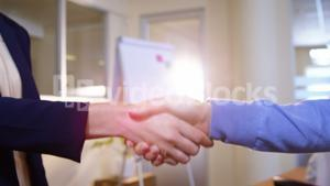 Close-up of female business executives shaking hands