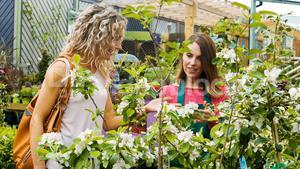 Female florist interacting with a customer