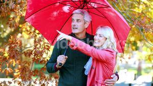 Couple standing under umbrella in park