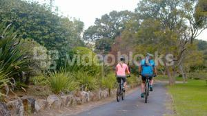 Couple cycling on the road in park