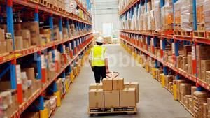 Male worker walking with a pallet truck