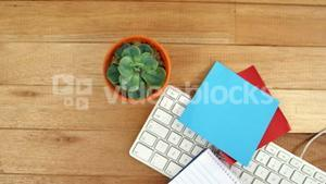 Pot plant with sticky notes and keyboard