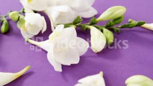 White flowers decorated