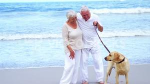 Happy senior couple playing with dog on the beach