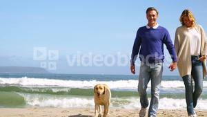 Happy mature couple walking with dog on the beach