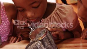 School kids using magnifying glass over rock