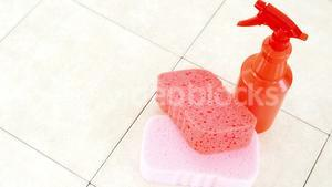 Spray bottle with cleaning sponges