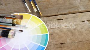 Paintbrushes with color swatch