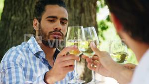 Happy two couples toasting wine glasses
