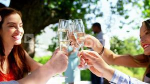 Group of friends toasting champagne glasses while having lunch