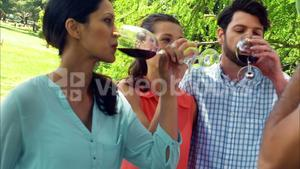 Family drinking wine in park