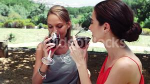 Two friends drinking red wine