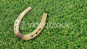 horse shoe on grass for st patricks day
