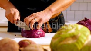 Chef cutting purple cabbage in cafe kitchen