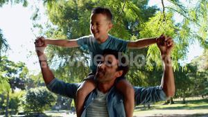 Father carrying son on his shoulders in park