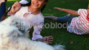 Siblings sitting with their pet dog in park