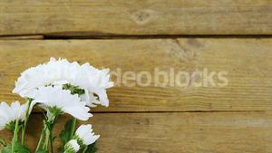 Bunch of white flowers on wooden plank
