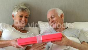 Senior man giving a surprise gift to woman in the bedroom