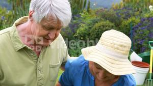 Smiling senior couple standing together in garden