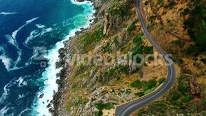 Coastal road surrounded by greenery